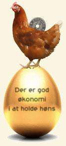 Høns og økonomi